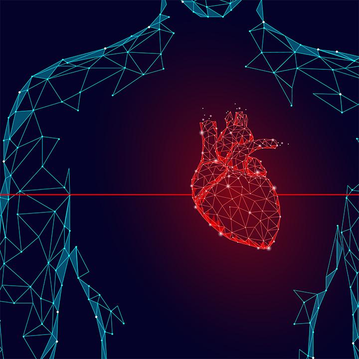 足が「第二の心臓」と呼ばれる理由